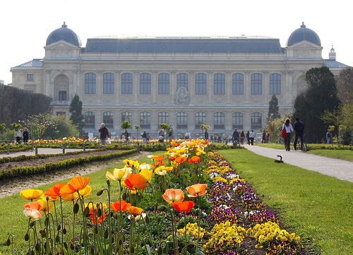 Hip paris blog rooftop paris exploring the 5th for Jardin plantes paris