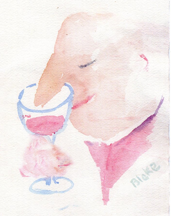 nose in wine