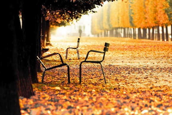 Paris in the Fall: La rentree