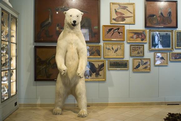 Paris Museum - Musee de la chasse et de la nature 4