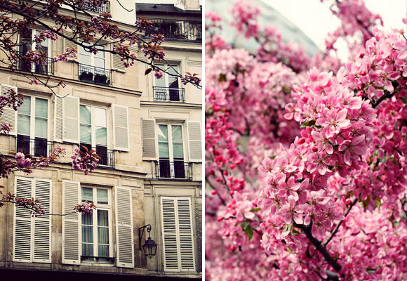 Knowing Your Parisian Neighbors