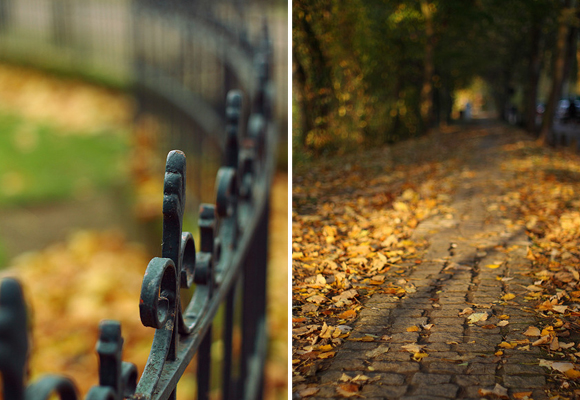 Living and working in Paris means you take leisurely strolls though the city's parks, which are beautiful in the fall, when the leaves are golden.