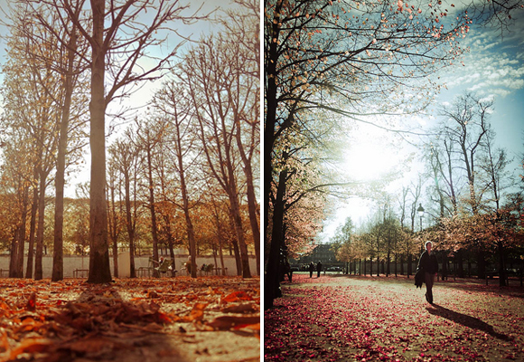 Becoming French, how to live and work in France, means you take leisurely strolls through the cities various parks, which are beautiful in the fall as the leaves of the trees glow gold.