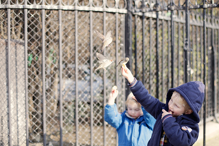 Sundays in Paris are spent with the kids, and taking them outside to play like this little boy in a navy hoodie and little girl in a blue coat, feeding the birds.