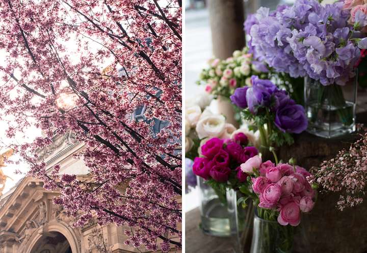 Spring in Paris, HiP Paris Blog, Photo by Rebecca Plotnick