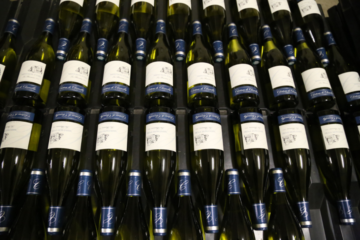 Affordable Wines of Burgundy, Chateau de Chamilly, HiP Paris Blog, Photo by Casey Hatfield