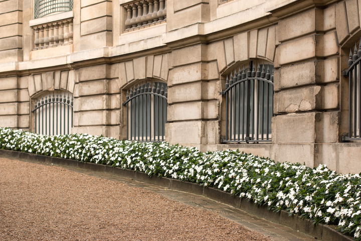 Elegant Eighth, a courtyard planted with white flowerbeds.