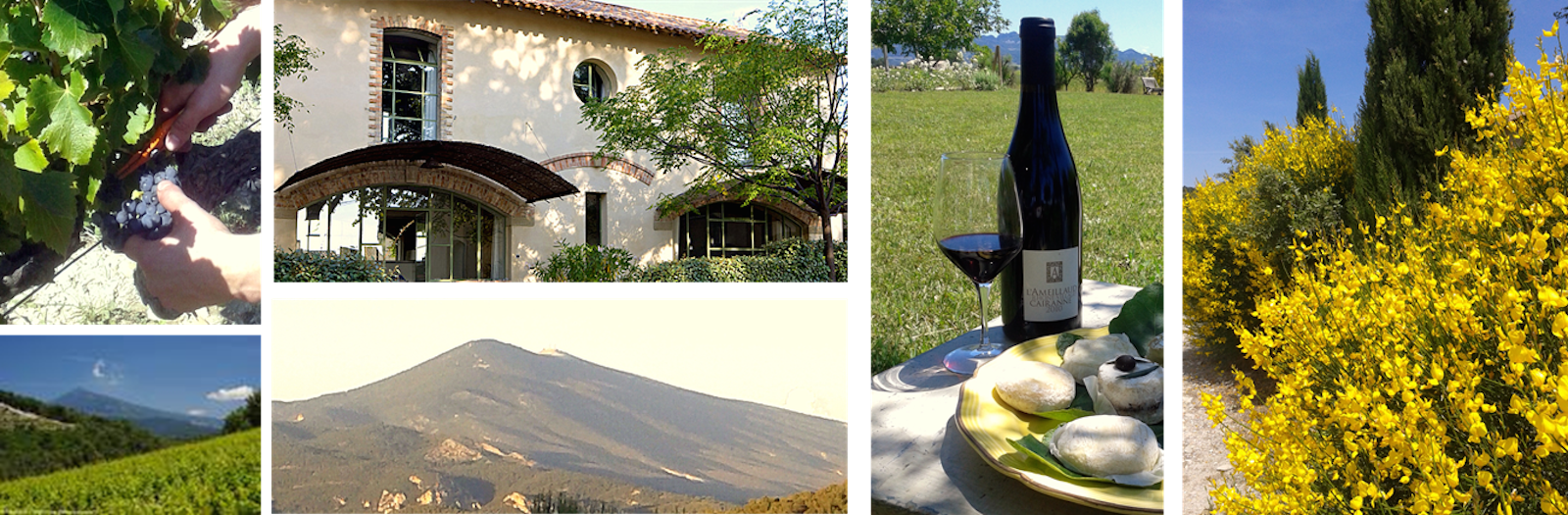 Provence villa rental and Cotes-du- Rhone wine
