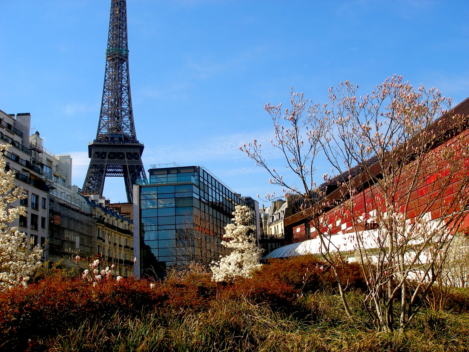Off the beaten path museums in Paris: Musee Cluny, Musee de quai Branly, Musee Zadkine, and more