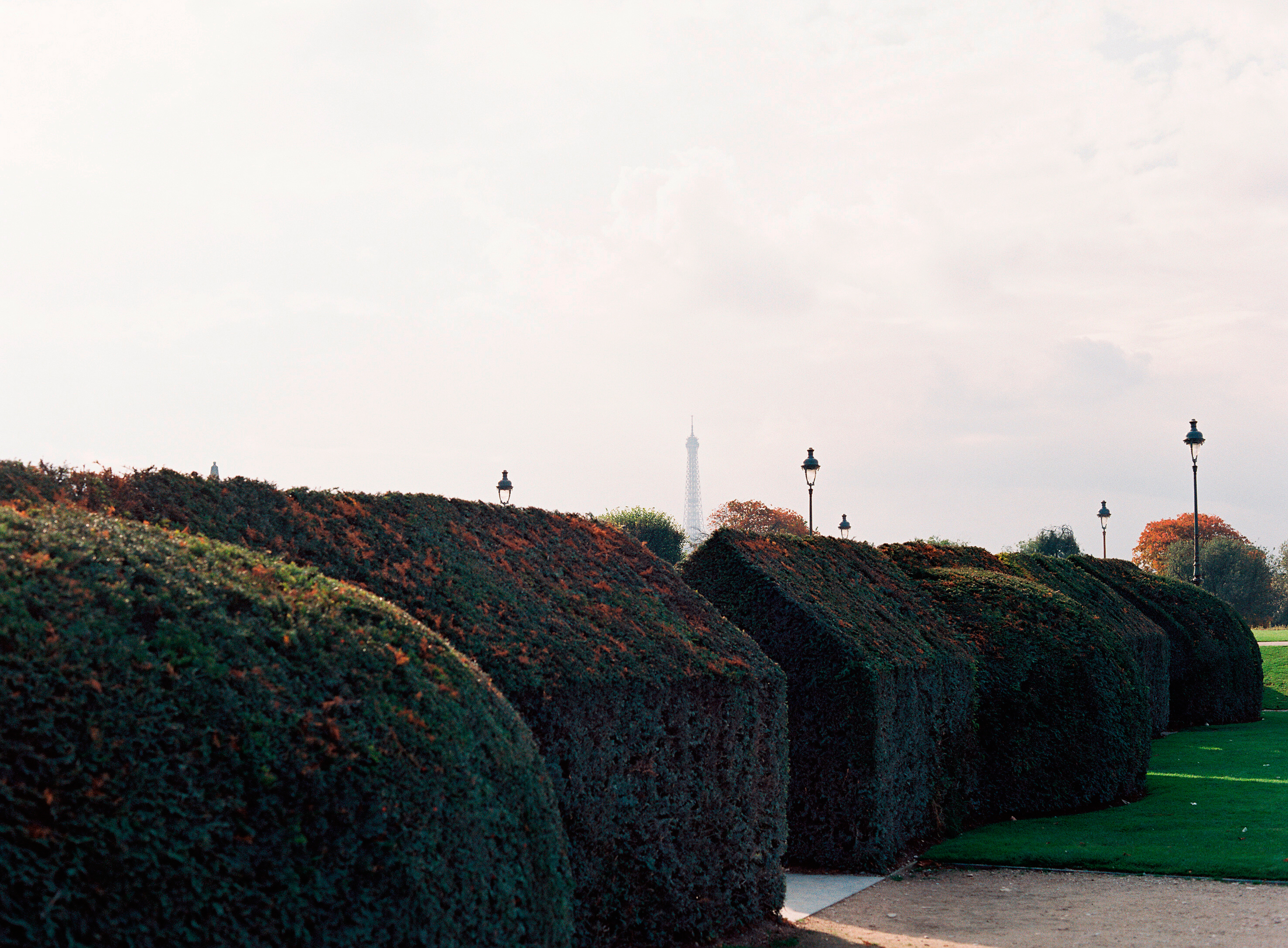 HiP Paris blog. Living, loving, learning in Paris. The Eiffel Tower peeking over the hedges. Photo by Marjorie Preval.