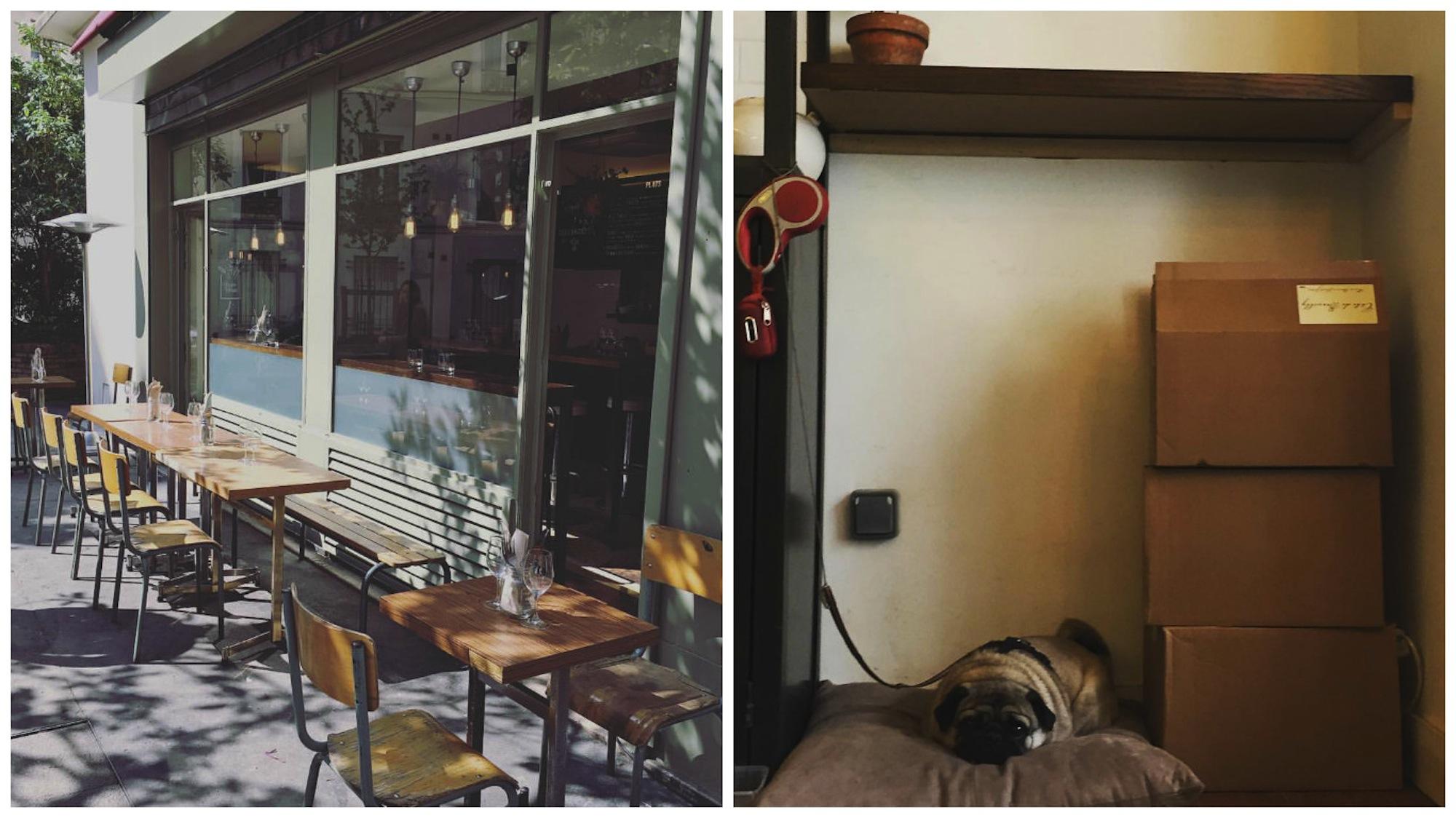 HiP Paris Blog Reviews GreenHouse 11th Arrondissement