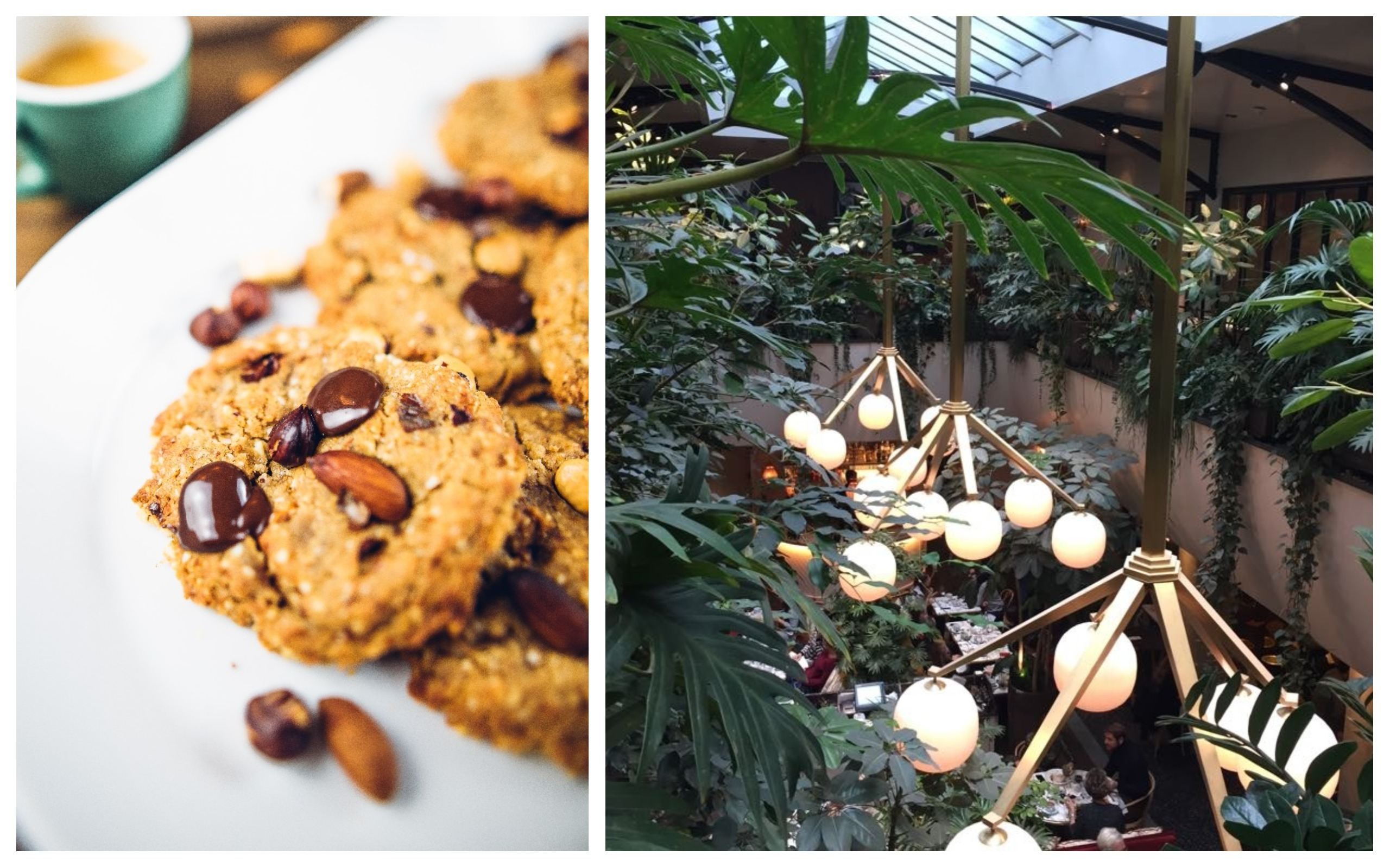 Homemade gluten-free cookies (left). Inside l'Acazar restaurant in Paris with lots of plants growing from the top gallery (right).