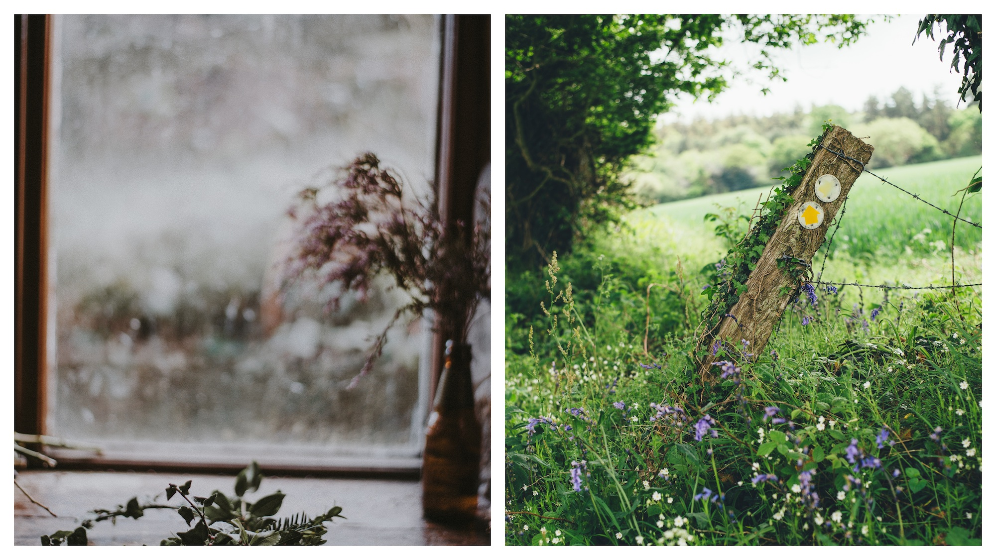 What it's like to live in the French countryside, and to spend time arranging flowers (left) and walking in nature (right).