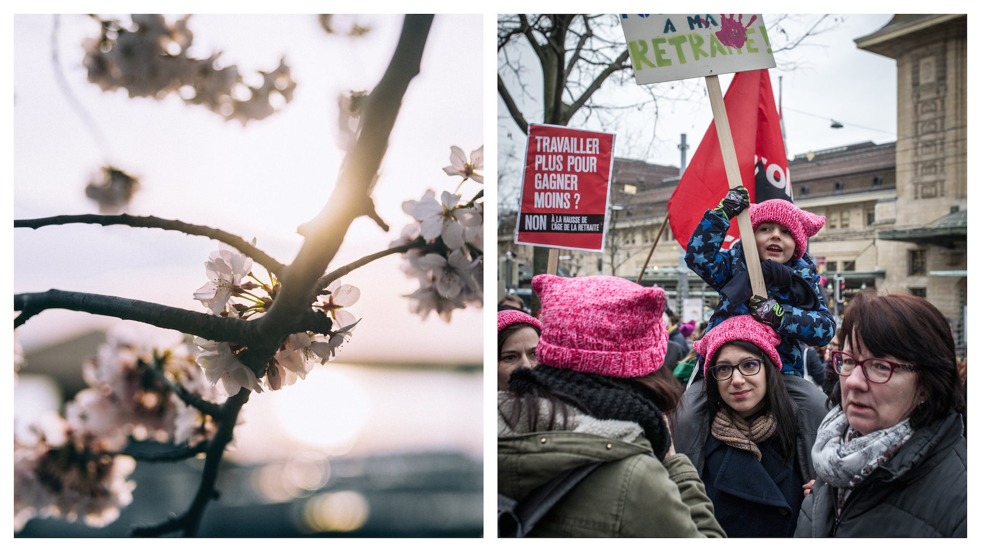 Paris trees in full bloom in March (left). Events in Paris in March, like protests (right).