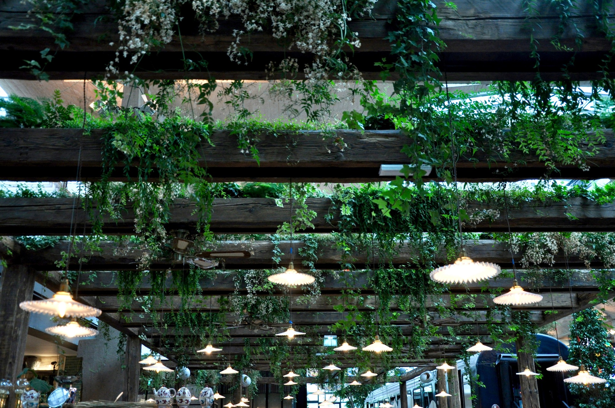 Paris restaurant, Big Mamma Group's La Felicita, comes with lots of green plants hanging from the ceiling, adding a feeling of wellbeing.